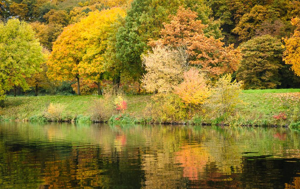 Herbst an der Ruhr