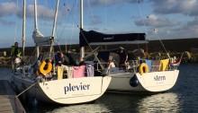 Stern und Plevier in IJmuiden