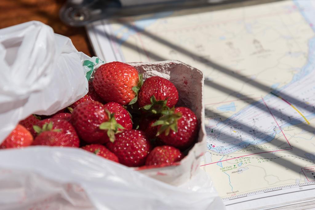 Erdbeeren auf dem Folkeboot